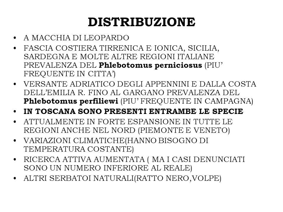 DISTRIBUZIONE A MACCHIA DI LEOPARDO FASCIA COSTIERA TIRRENICA E IONICA, SICILIA, SARDEGNA E MOLTE ALTRE REGIONI ITALIANE PREVALENZA DEL Phlebotomus pe