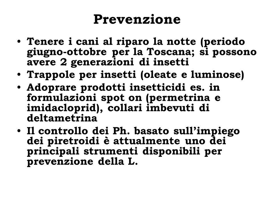 Prevenzione Tenere i cani al riparo la notte (periodo giugno-ottobre per la Toscana; si possono avere 2 generazioni di insetti Trappole per insetti (o