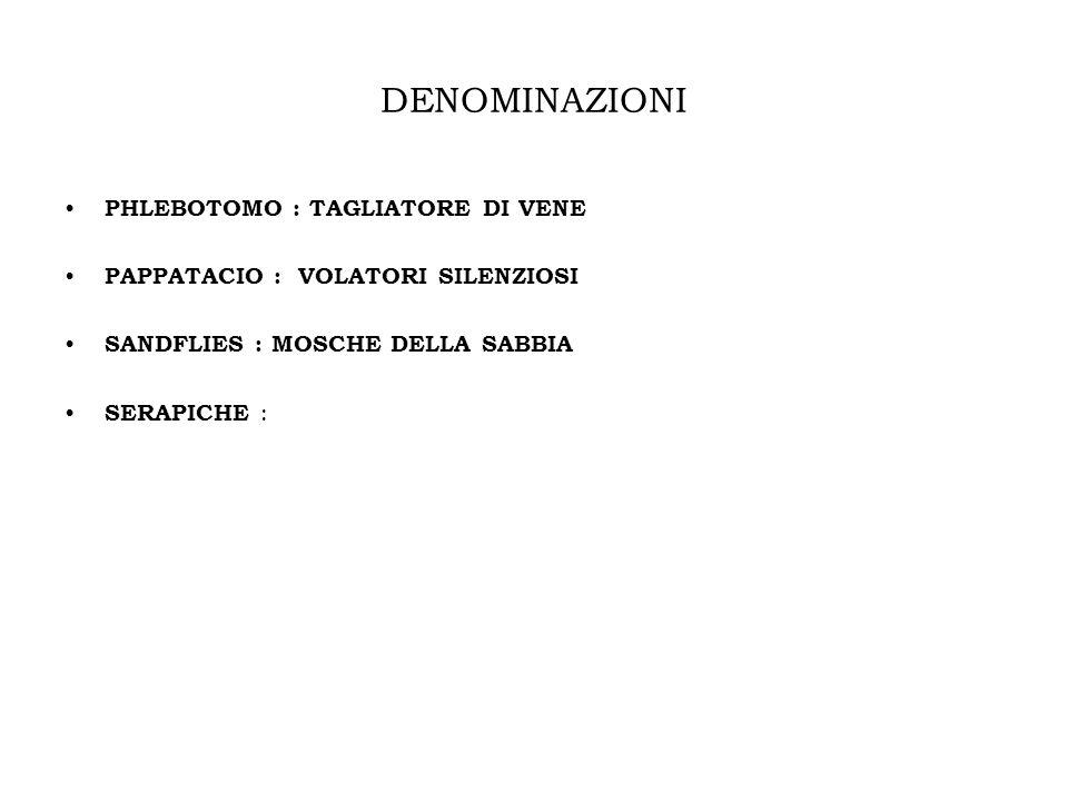 DISTRIBUZIONE A MACCHIA DI LEOPARDO FASCIA COSTIERA TIRRENICA E IONICA, SICILIA, SARDEGNA E MOLTE ALTRE REGIONI ITALIANE PREVALENZA DEL Phlebotomus perniciosus (PIU FREQUENTE IN CITTA) VERSANTE ADRIATICO DEGLI APPENNINI E DALLA COSTA DELLEMILIA R.