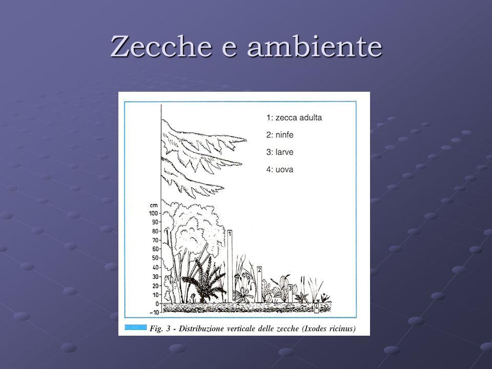 Zecche e ambiente