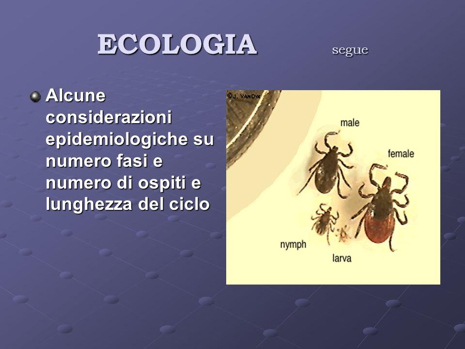 ECOLOGIA segue Alcune considerazioni epidemiologiche su numero fasi e numero di ospiti e lunghezza del ciclo