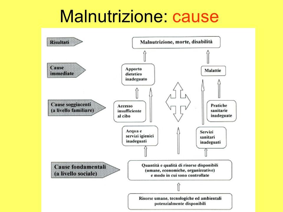Malnutrizione: cause