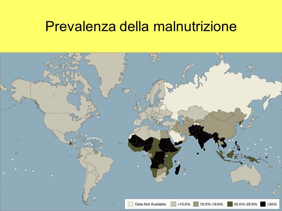 Malnutrizione- Strategie dintervento Marzia Lazzerini -Trieste-