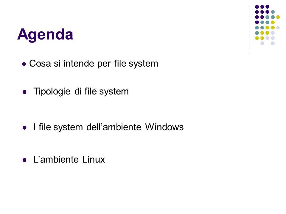 File System (FS) File System : lorganizzazione logica e fisica dei documenti nellhard disk.