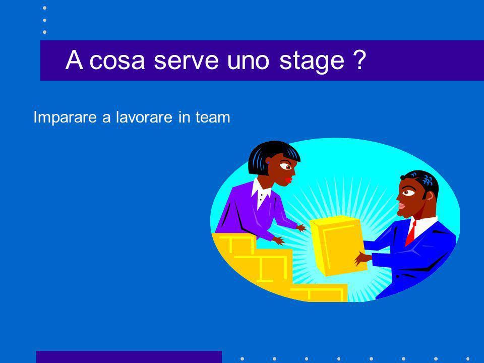 A cosa serve uno stage ? Imparare a lavorare in team