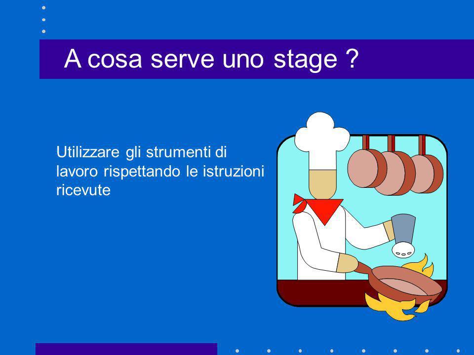 A cosa serve uno stage ? Utilizzare gli strumenti di lavoro rispettando le istruzioni ricevute