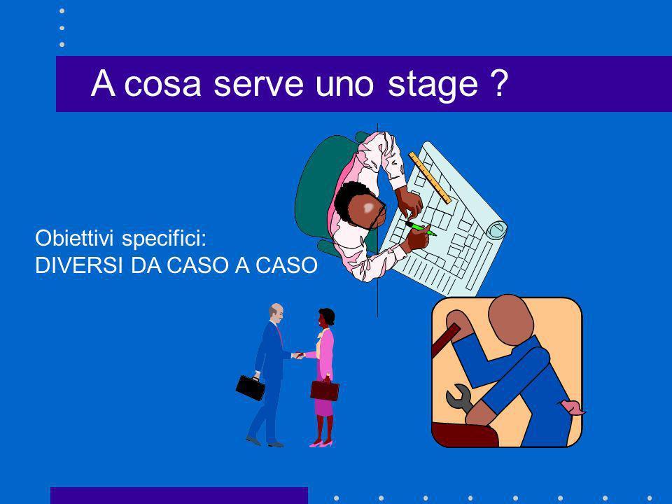 A cosa serve uno stage ? Obiettivi specifici: DIVERSI DA CASO A CASO