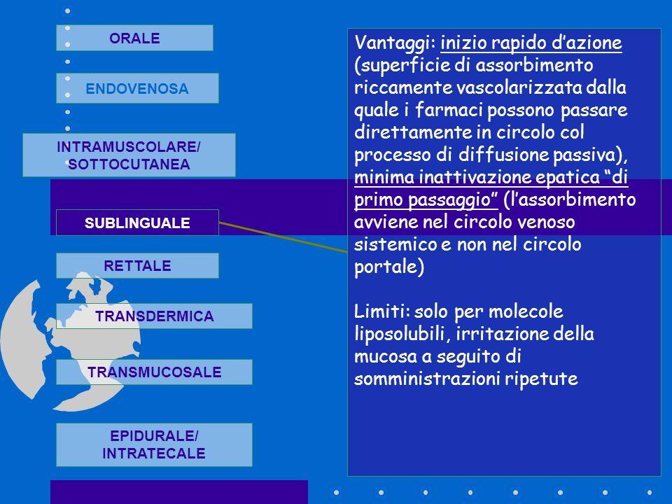 ORALE ENDOVENOSA INTRAMUSCOLARE/ SOTTOCUTANEA SUBLINGUALE RETTALE TRANSDERMICA TRANSMUCOSALE EPIDURALE/ INTRATECALE Vantaggi: inizio rapido dazione (s