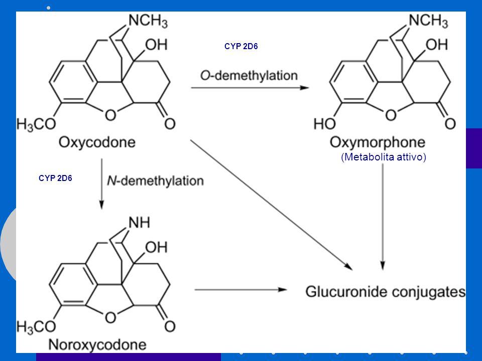 CYP 2D6 (Metabolita attivo) CYP 2D6