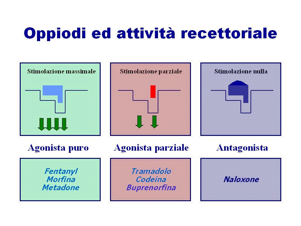 ORALE ENDOVENOSA INTRAMUSCOLARE/ SOTTOCUTANEA SUBLINGUALE RETTALE TRANSDERMICA TRANSMUCOSALE EPIDURALE/ INTRATECALE Vantaggi: consentono la somministrazione efficace di farmaci che non possono essere somministrati per via orale (es: quelli altamente polari) Limiti: può verificarsi ritardo nellassorbimento in presenza di rallentamento del circolo (es: ipertermia, ipovolemia, vasocostrizione periferica), con comparsa del picco analgesico più lunga rispetto alla via endovenosa (ma più breve della via orale), dolore susseguente alliniezione.