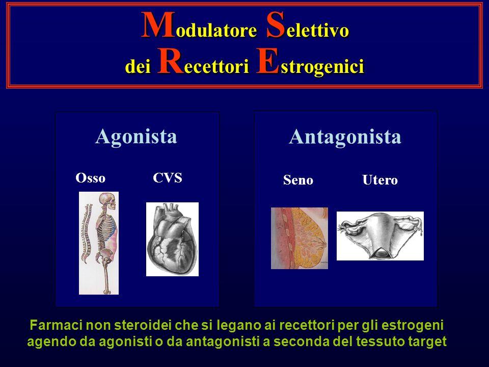Agonista OssoCVS Antagonista SenoUtero M odulatore S elettivo dei R ecettori E strogenici Farmaci non steroidei che si legano ai recettori per gli estrogeni agendo da agonisti o da antagonisti a seconda del tessuto target