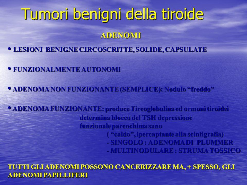 Tumori benigni della tiroide ADENOMI LESIONI BENIGNE CIRCOSCRITTE, SOLIDE, CAPSULATE LESIONI BENIGNE CIRCOSCRITTE, SOLIDE, CAPSULATE FUNZIONALMENTE AU