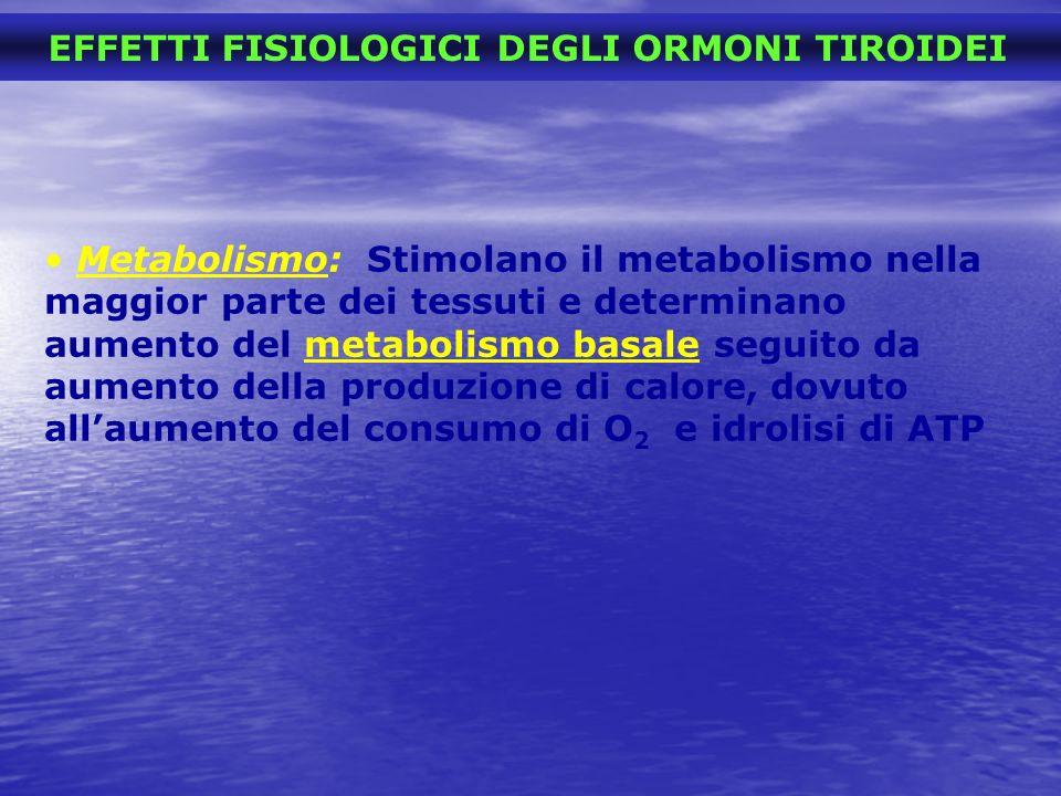 EFFETTI FISIOLOGICI DEGLI ORMONI TIROIDEI Metabolismo: Stimolano il metabolismo nella maggior parte dei tessuti e determinano aumento del metabolismo
