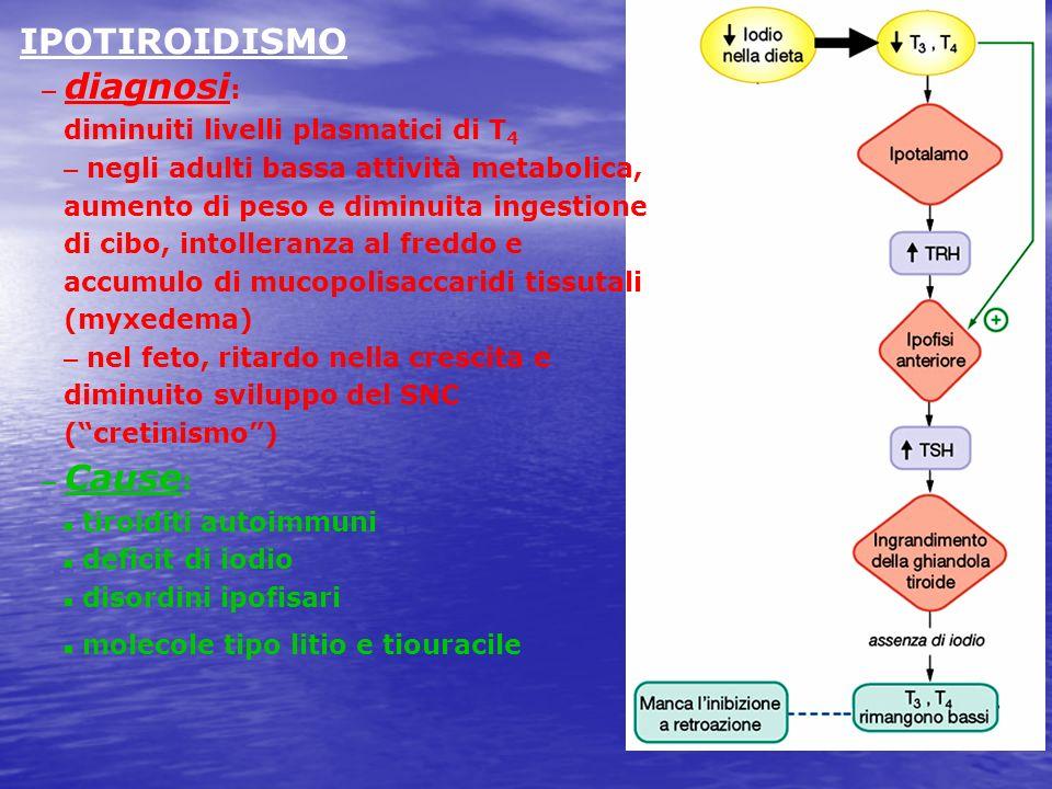 IPOTIROIDISMO – diagnosi : diminuiti livelli plasmatici di T 4 – negli adulti bassa attività metabolica, aumento di peso e diminuita ingestione di cib