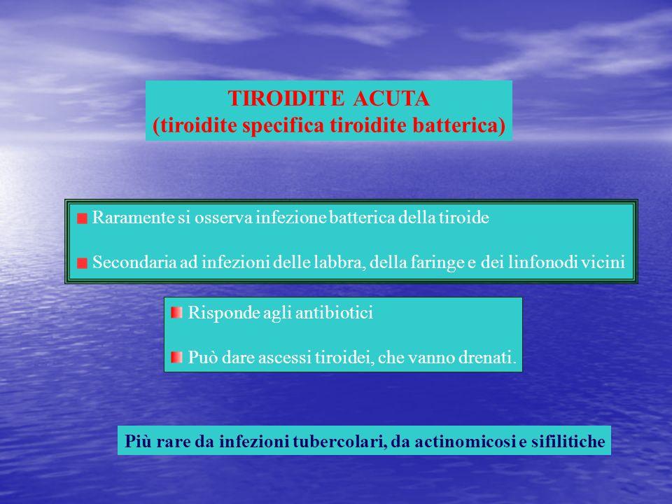 TIROIDITE ACUTA (tiroidite specifica tiroidite batterica) Raramente si osserva infezione batterica della tiroide Secondaria ad infezioni delle labbra,
