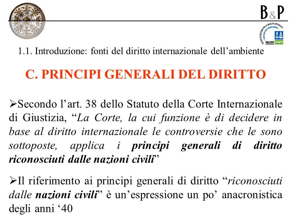 1.1. Introduzione: fonti del diritto internazionale dellambiente C. PRINCIPI GENERALI DEL DIRITTO Secondo lart. 38 dello Statuto della Corte Internazi