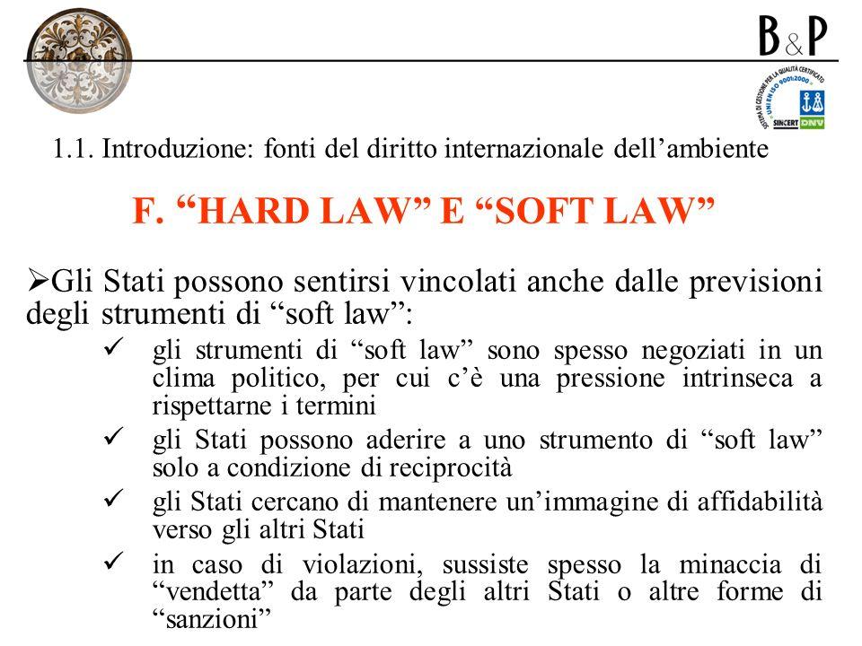 1.1. Introduzione: fonti del diritto internazionale dellambiente F. HARD LAW E SOFT LAW Gli Stati possono sentirsi vincolati anche dalle previsioni de