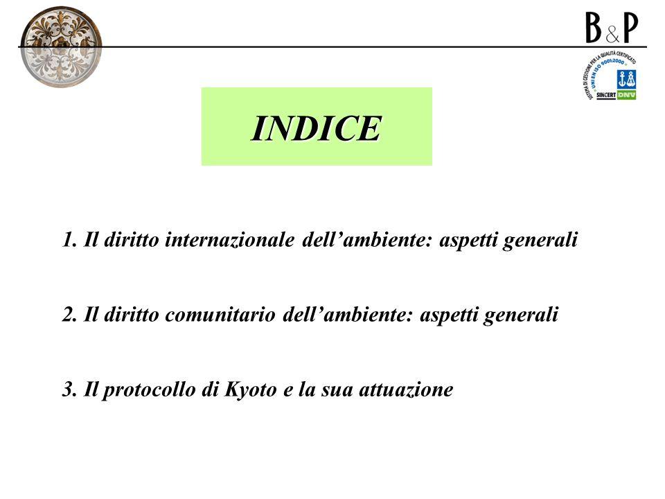 INDICE 1. Il diritto internazionale dellambiente: aspetti generali 2. Il diritto comunitario dellambiente: aspetti generali 3. Il protocollo di Kyoto