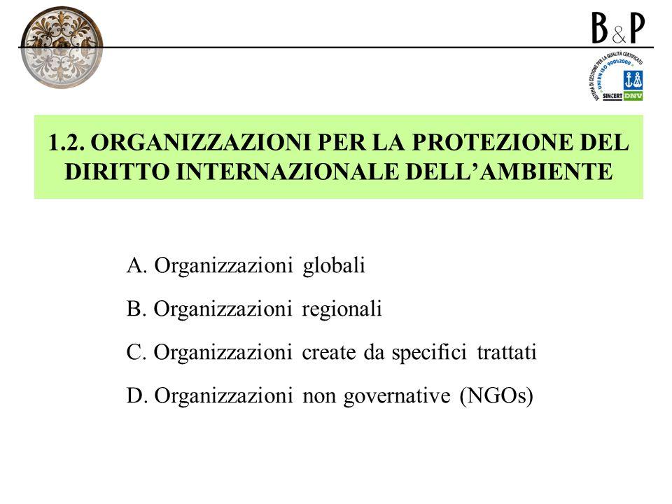 1.2. ORGANIZZAZIONI PER LA PROTEZIONE DEL DIRITTO INTERNAZIONALE DELLAMBIENTE A. Organizzazioni globali B. Organizzazioni regionali C. Organizzazioni