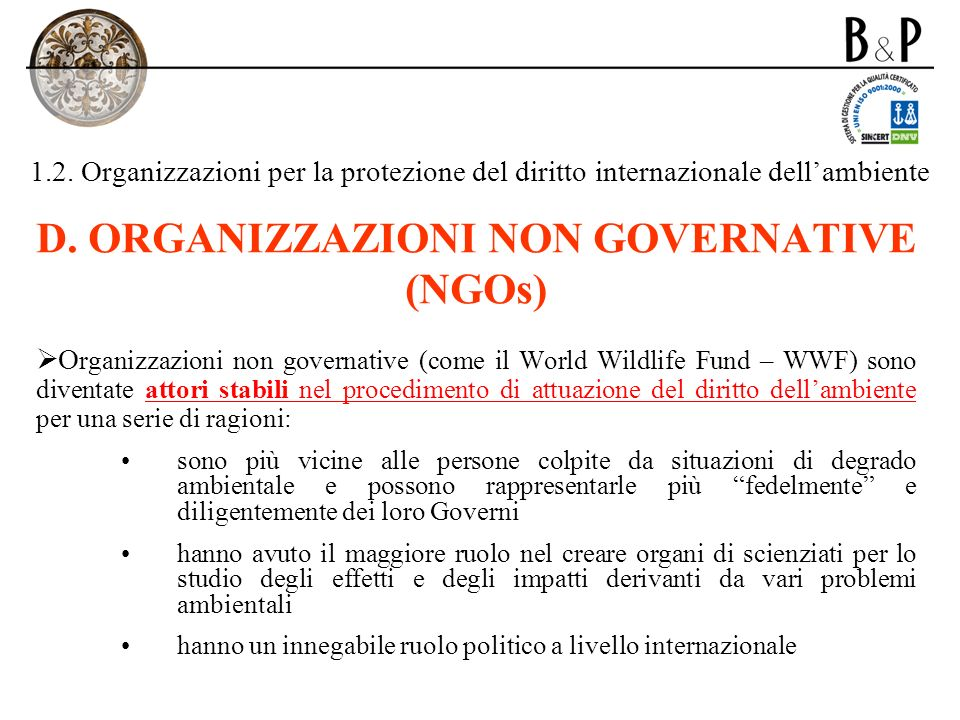 1.2. Organizzazioni per la protezione del diritto internazionale dellambiente D. ORGANIZZAZIONI NON GOVERNATIVE (NGOs) O rganizzazioni non governative