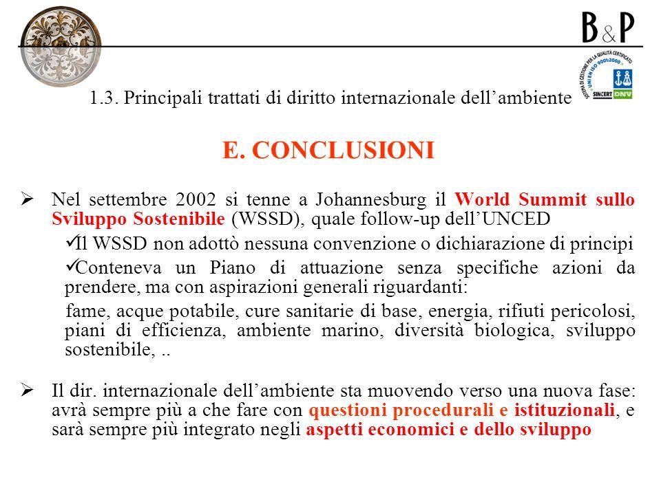 1.3. Principali trattati di diritto internazionale dellambiente E. CONCLUSIONI Nel settembre 2002 si tenne a Johannesburg il World Summit sullo Svilup