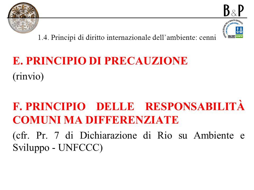 1.4. Principi di diritto internazionale dellambiente: cenni E. PRINCIPIO DI PRECAUZIONE (rinvio) F. PRINCIPIO DELLE RESPONSABILITÀ COMUNI MA DIFFERENZ