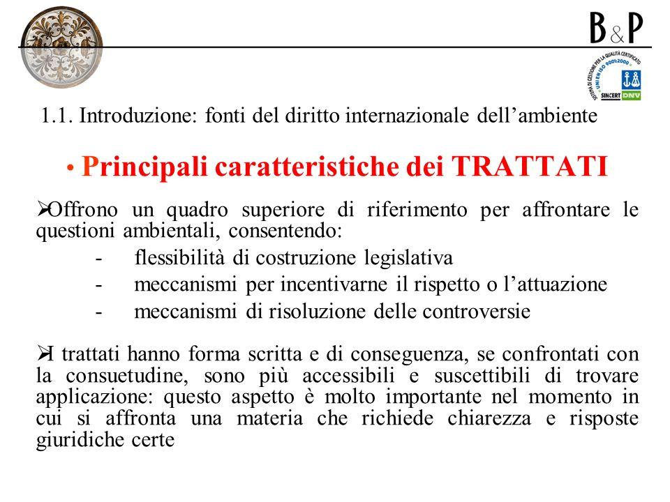 1.1. Introduzione: fonti del diritto internazionale dellambiente Principali caratteristiche dei TRATTATI Offrono un quadro superiore di riferimento pe