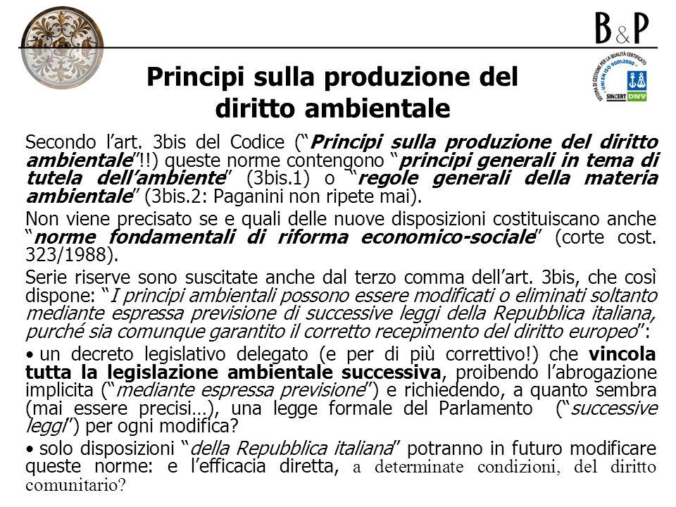 Principi sulla produzione del diritto ambientale Secondo lart. 3bis del Codice (Principi sulla produzione del diritto ambientale!!) queste norme conte