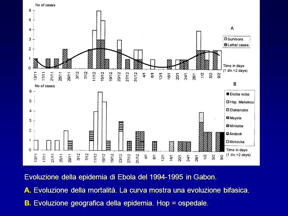Evoluzione della epidemia di Ebola del 1994-1995 in Gabon. A. Evoluzione della mortalità. La curva mostra una evoluzione bifasica. B. Evoluzione geogr