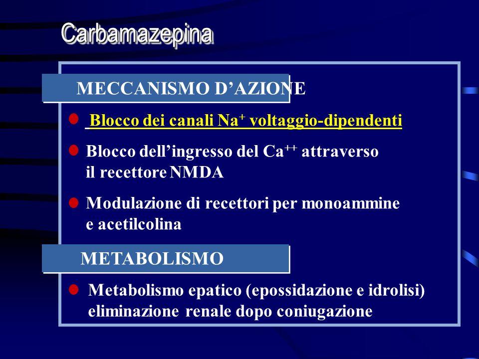 MECCANISMO DAZIONE Blocco dei canali Na + voltaggio-dipendenti Blocco dellingresso del Ca ++ attraverso il recettore NMDA Modulazione di recettori per