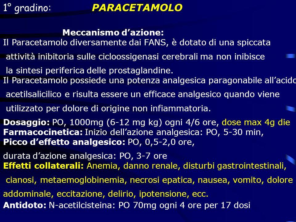 1° gradino: PARACETAMOLO Meccanismo dazione: Il Paracetamolo diversamente dai FANS, è dotato di una spiccata attività inibitoria sulle cicloossigenasi