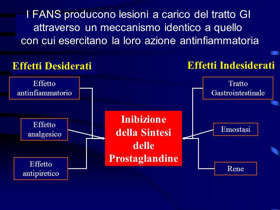 I FANS producono lesioni a carico del tratto GI attraverso un meccanismo identico a quello con cui esercitano la loro azione antinfiammatoria Effetti