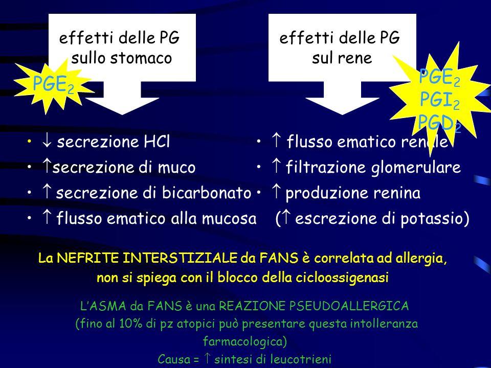effetti delle PG sullo stomaco secrezione HCl secrezione di muco secrezione di bicarbonato flusso ematico alla mucosa effetti delle PG sul rene flusso