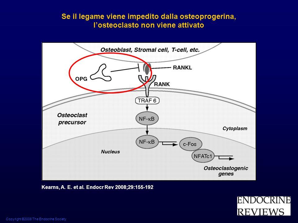 Copyright ©2008 The Endocrine Society Kearns, A. E. et al. Endocr Rev 2008;29:155-192 Se il legame viene impedito dalla osteoprogerina, losteoclasto n