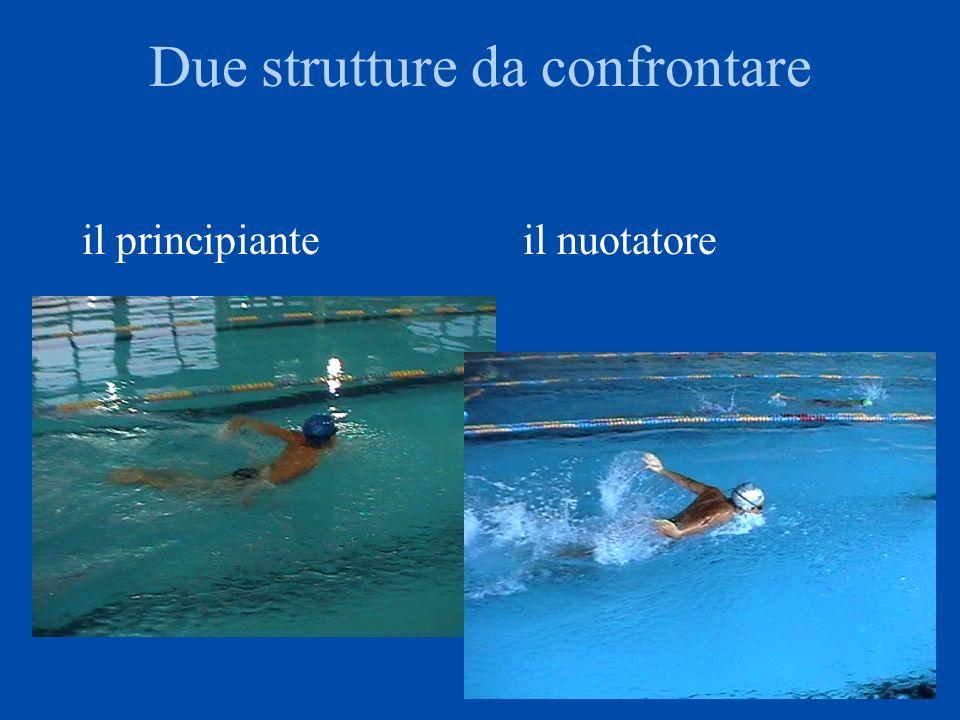 Due strutture diverse, una solo è il delfino Mentre le braccia escono le gambe salgono (associazione ga-br-testa) o scendono (per far uscire le br)?