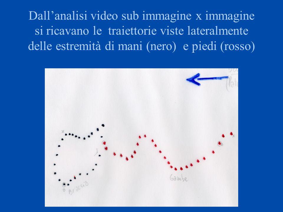 commento La freccia indica la direzione di avanzamento del nuotatore.
