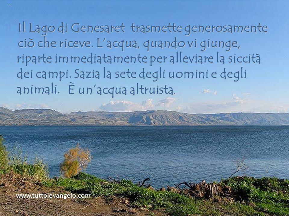 www.tuttolevangelo.com Il Lago di Genesaret trasmette generosamente ciò che riceve.