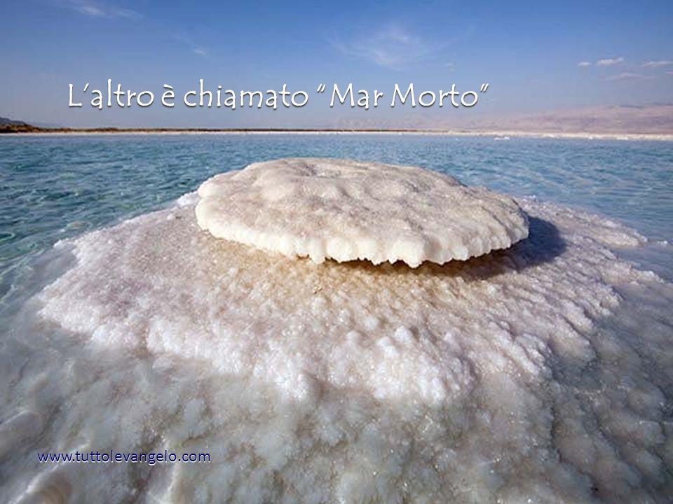 www.tuttolevangelo.com Laltro è chiamato Mar Morto