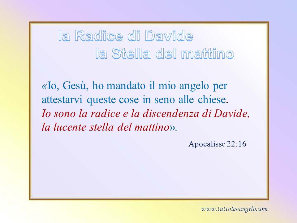«Io, Gesù, ho mandato il mio angelo per attestarvi queste cose in seno alle chiese. Io sono la radice e la discendenza di Davide, la lucente stella de