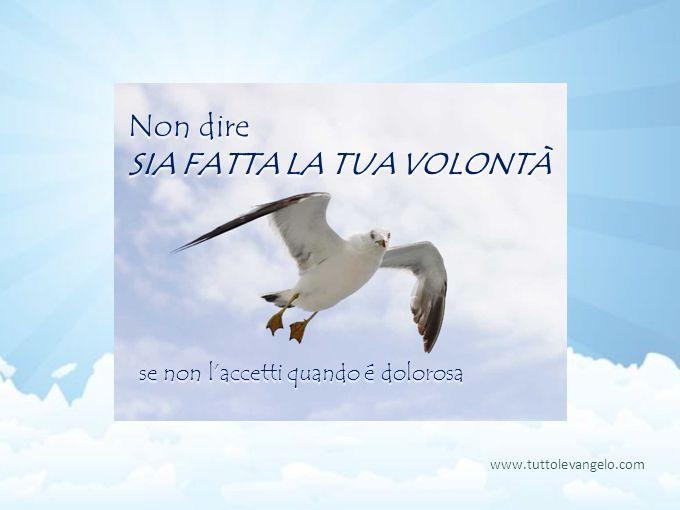 Non dire SIA FATTA LA TUA VOLONTÀ se non laccetti quando é dolorosa www.tuttolevangelo.com