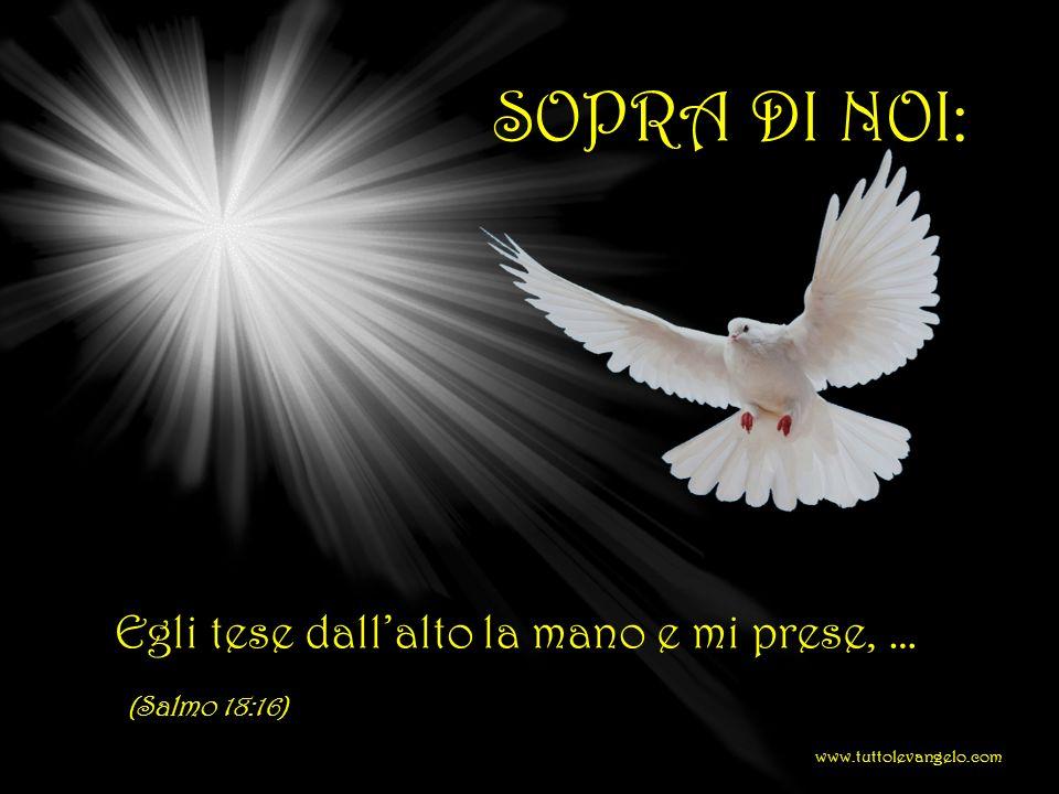 SOTTO DI NOI:... sotto di te stanno le braccia eterne. (Deuteronomio 33:27) www.tuttolevangelo.com