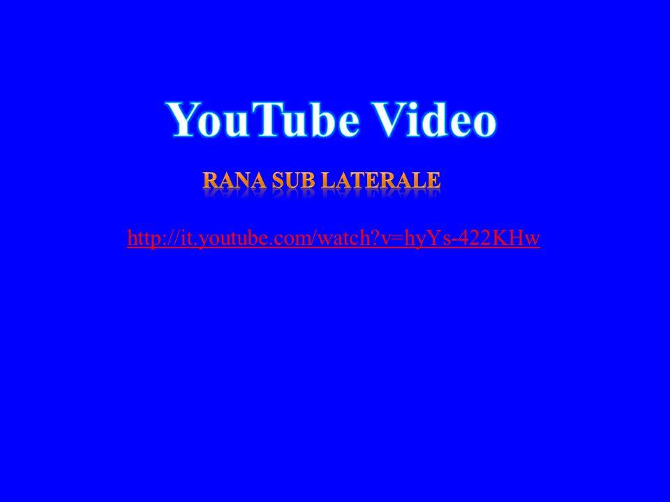 http://it.youtube.com/watch?v=hyYs-422KHw