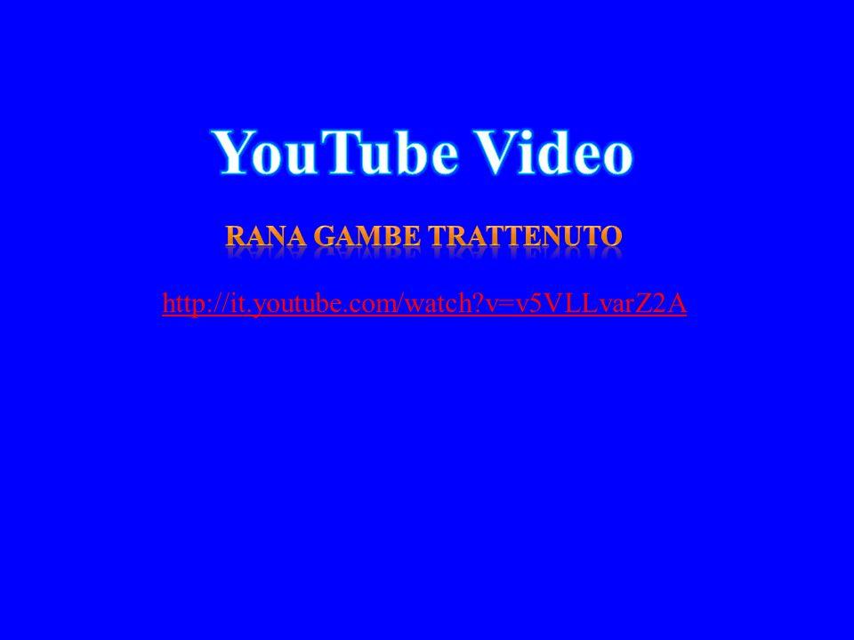http://it.youtube.com/watch?v=v5VLLvarZ2A