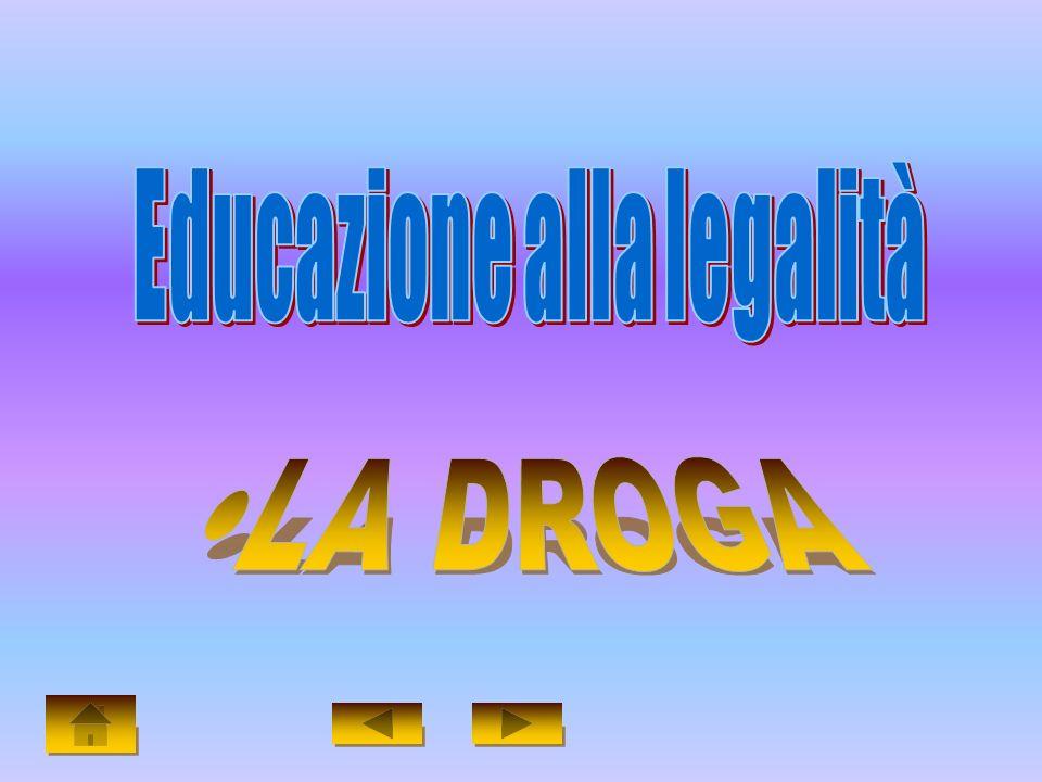 Presentazione di: Lombardi Luigi & Barbieri Giovanni II B Corso geometri Progetto 5