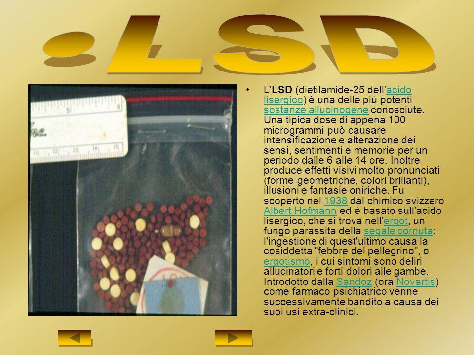 L LSD (dietilamide-25 dell acido lisergico) è una delle più potenti sostanze allucinogene conosciute.