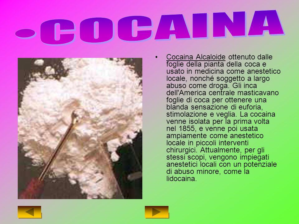 Cocaina Alcaloide ottenuto dalle foglie della pianta della coca e usato in medicina come anestetico locale, nonché soggetto a largo abuso come droga.