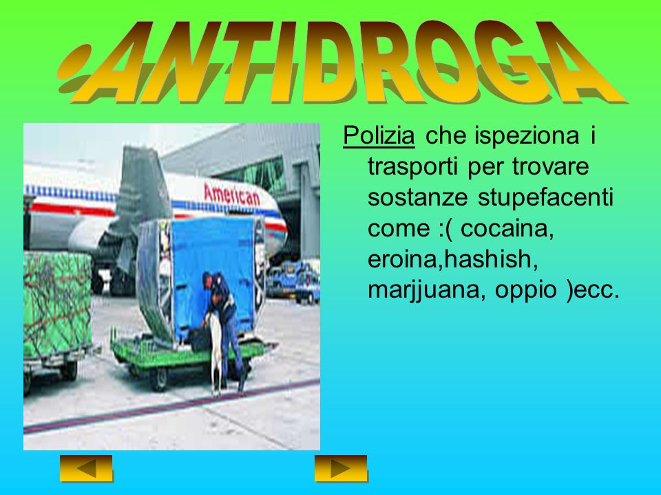 Polizia che ispeziona i trasporti per trovare sostanze stupefacenti come :( cocaina, eroina,hashish, marjjuana, oppio )ecc.