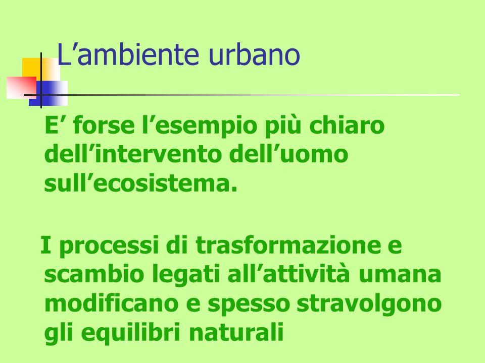 Lambiente urbano E forse lesempio più chiaro dellintervento delluomo sullecosistema. I processi di trasformazione e scambio legati allattività umana m