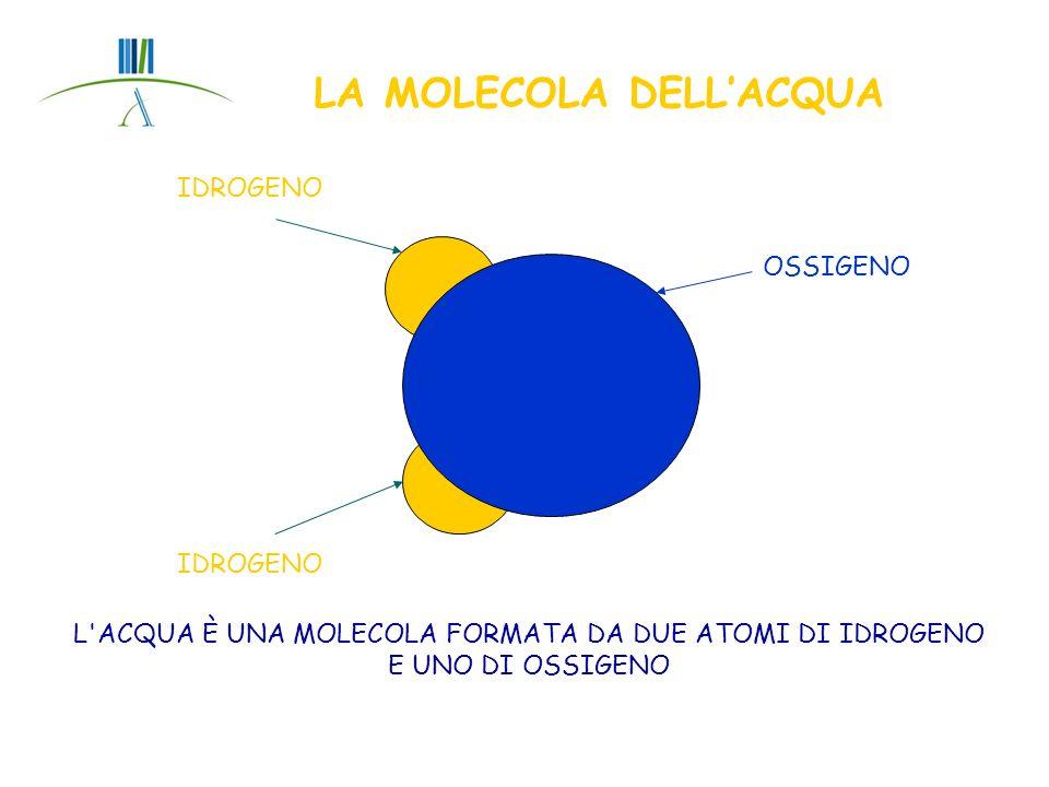 LE PROPRIETA DELLACQUA FORMULA CHIMICA : H 2 O, TEMPERATURA DI EBOLLIZIONE : 100°C TEMPERATURA DI CONGELAMENTO: 0°C E LA MOLECOLA PIU PRESENTE SULLA TERRA MASSIMA DENSITA : 4 °C COSTITUISCE IL 70% DELLA MASSA CORPOREA QUANDO SI SOLIDIFICA IL VOLUME AUMENTA, AL CONTRARIO DI CIÒ CHE ACCADE CON LE ALTRE SOSTANZE; QUINDI LA DENSITÀ DEL GHIACCIO È MINORE DELLA DENSITA DELLA FASE LIQUIDA