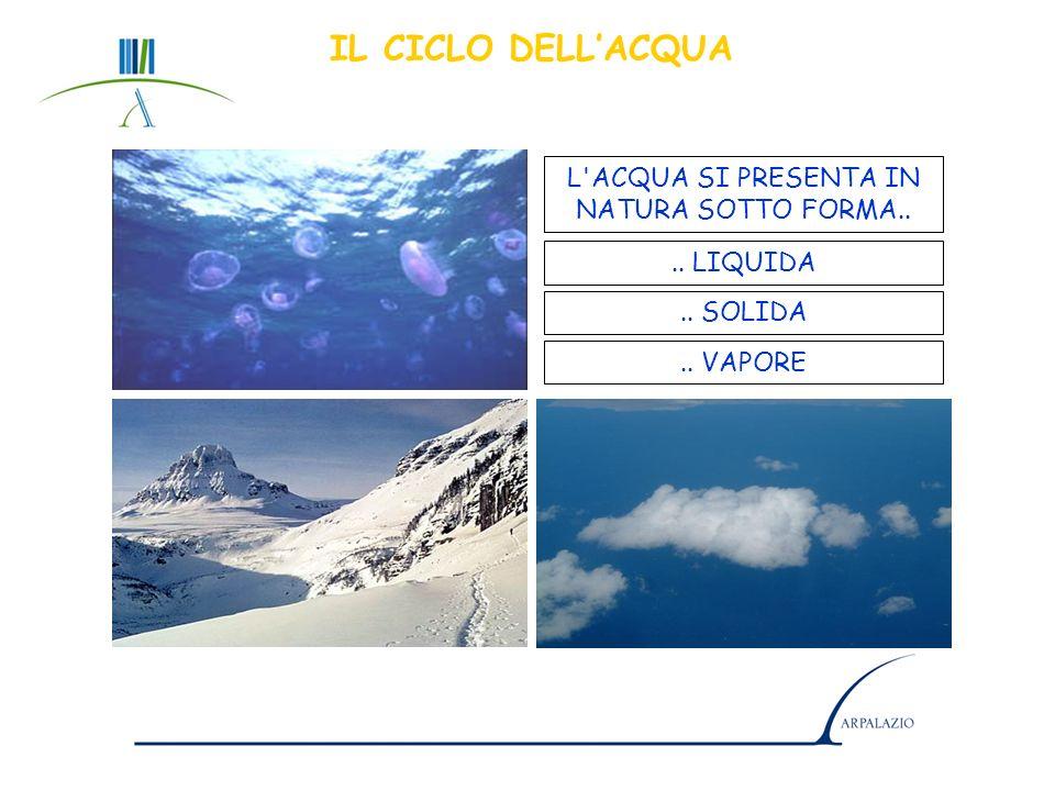 Agenzia Regionale Protezione Ambiente